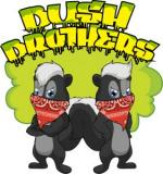 Logo Bush Brothers Seeds