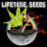 Logo Lifetime Seeds