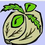Logo Southern Humboldt Seeds Collective