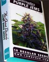Purple Jems