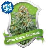 White Widow Automatic