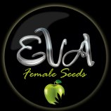 Logo Eva Female Seeds