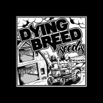 Logo Dying Breed Seeds