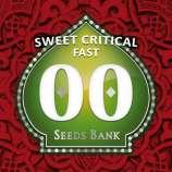 Sweet Critical Fast