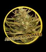 Auto Demon Mass