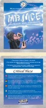 Critical Haze
