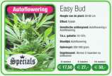 Royal Queen Seeds Easy Bud