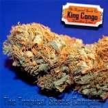 King Congo