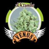 AKtombe