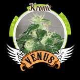 Kronic