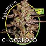 ChocoLoco