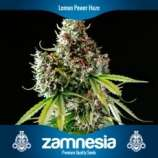 Zamnesia Lemon Power Haze