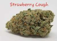 Imagen de TheHappyChameleon (Strawberry Cough)